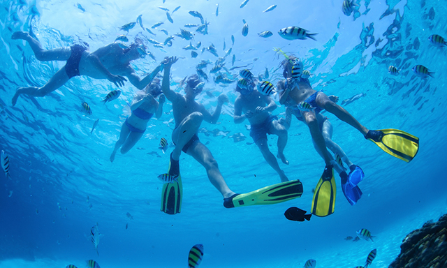 3 Reef Snorkel by Boat