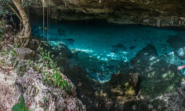 Underground Mayan River Cenote & Famous 5th Street Shopping and Beach