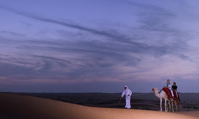 Arabian Desert Overnight Experience