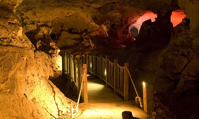 Green Grotto Caves & Dunns River Falls