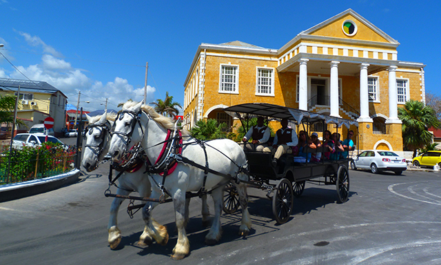 Chukka Horse & Buggy Ride through Historical Falmouth