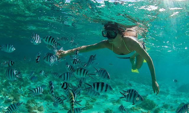 Margaritaville Snorkel, Beach Break and Caribbean Party