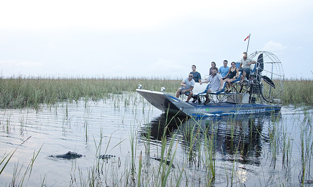 Everglades Airboat Ride (Ends at MIA)