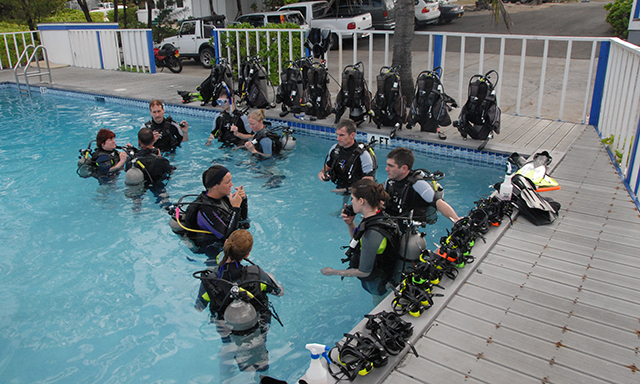 Guided Certified Shore Dive with Equipment