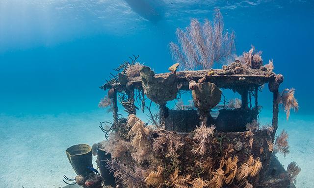Shipwreck Shore Snorkel