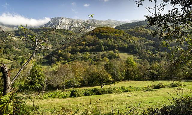 Valley of the Bear & Prehistoric Park Teverga