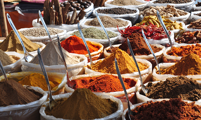 India's Hindu Temples and Spices Tour With Lunch