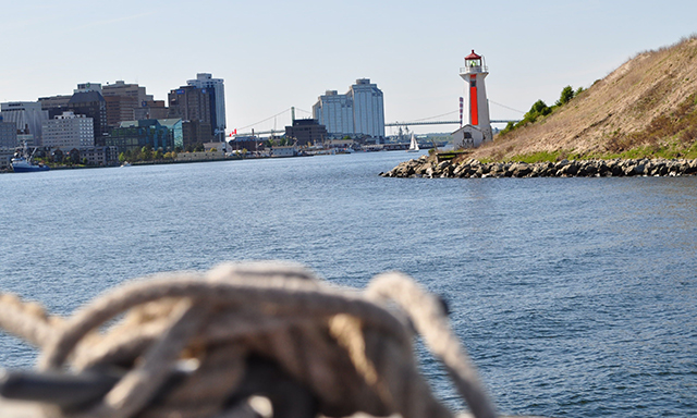 Marine Wildlife Watching Tour - Lobsters & Lighthouses