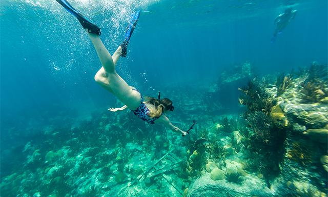 Bermuda Triangle Shipwreck Snorkel