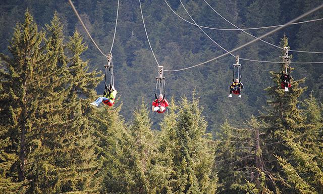 Adventure Park & ZipRider Combo