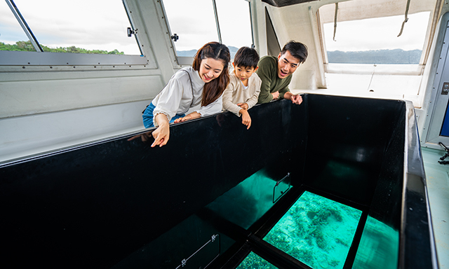 Ishigaki Highlights With Glass Bottom Boat Ride