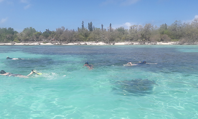 Moro Island Beach & Wildlife