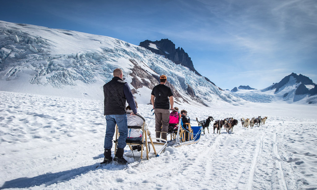 Dog Sledding on the Mendenhall Glacier by Helicopter