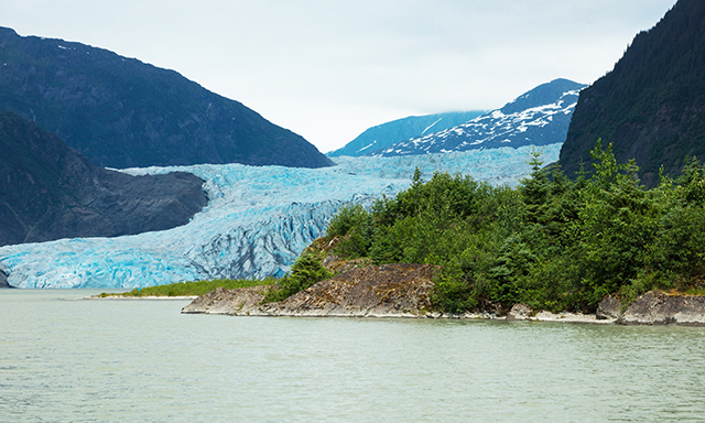 Mendenhall Glacier and Evening Whale Quest
