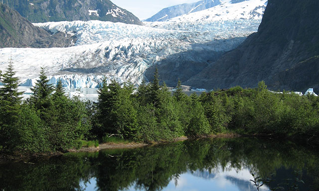 Mendenhall Glacier and Gardens