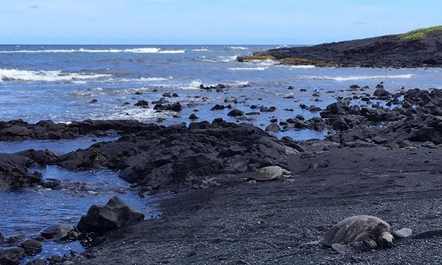 Hawaii Volcanoes National Park - Kahuku Unit