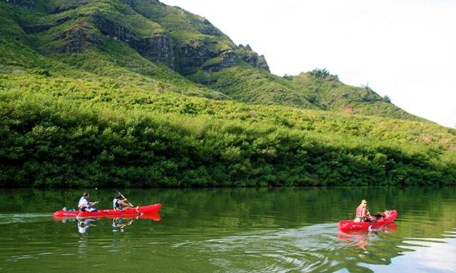Kona Kayak and Snorkel Adventure