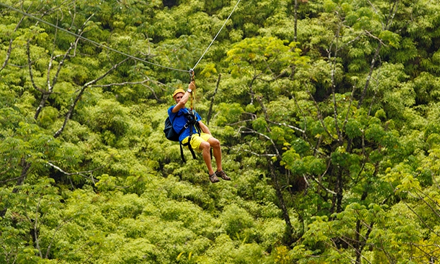 Kauai Canopy Zipline