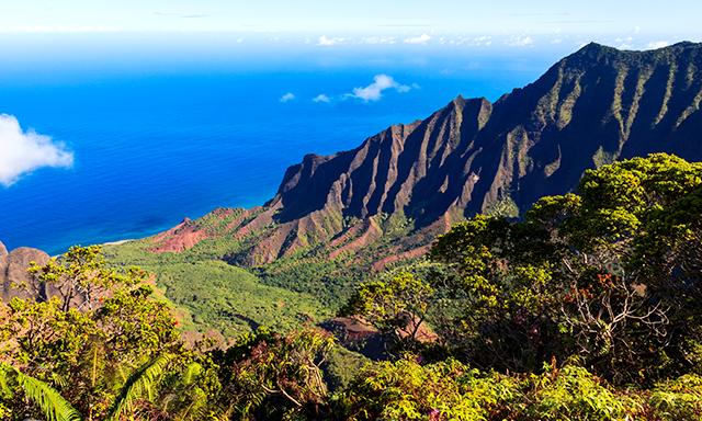 Kauai Mountain Tour