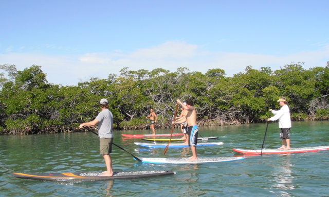 Beginner?s Stand Up Paddleboarding