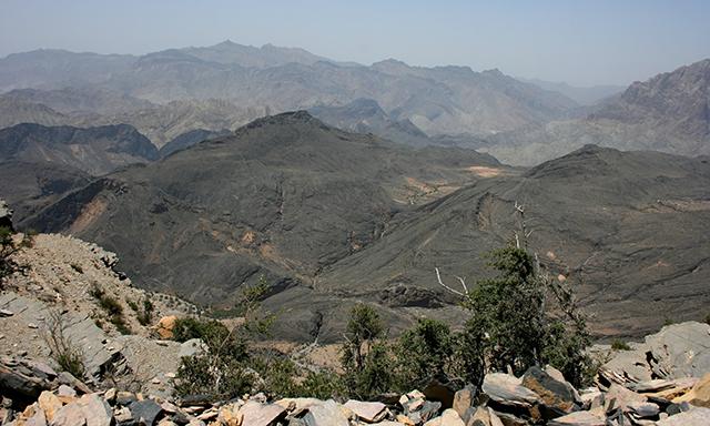 Safari to Jebel Harim