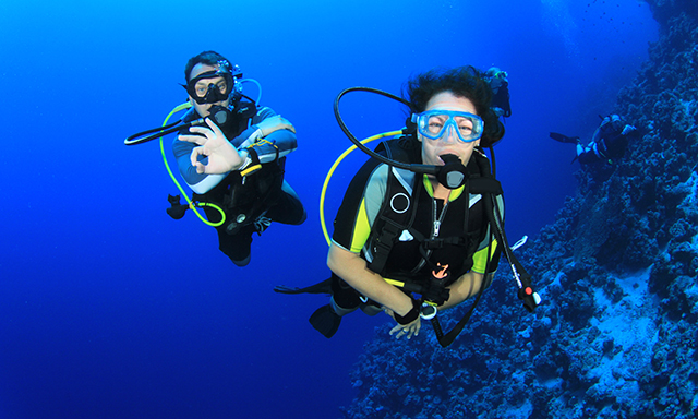 Bermuda Beginner SCUBA Diving Adventure