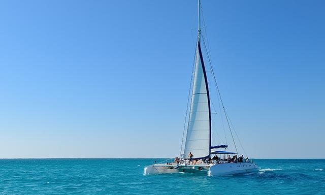Catamaran Coral Reef Snorkel