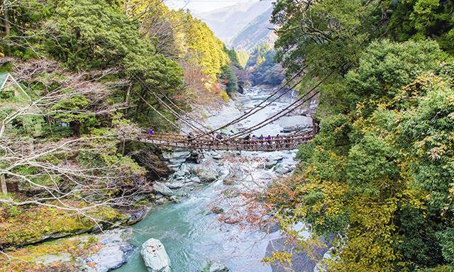 Oboke Gorge & Iya Kazurabashi Bridge