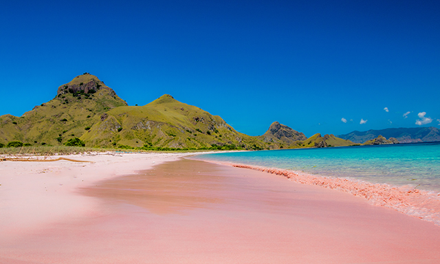Kampung Komodo Village and Pink Beach