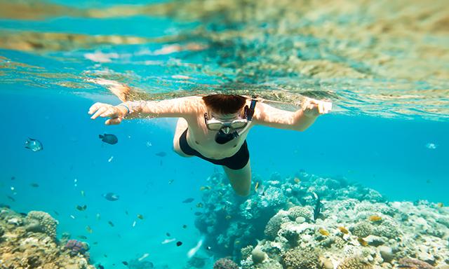 Beach Shore Snorkel