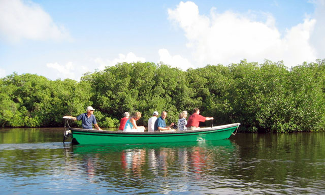 Mangrove Eco Boat