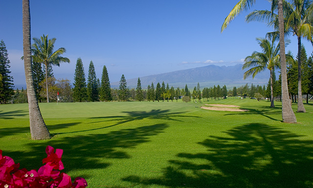 UpCountry Maui Golf Experience