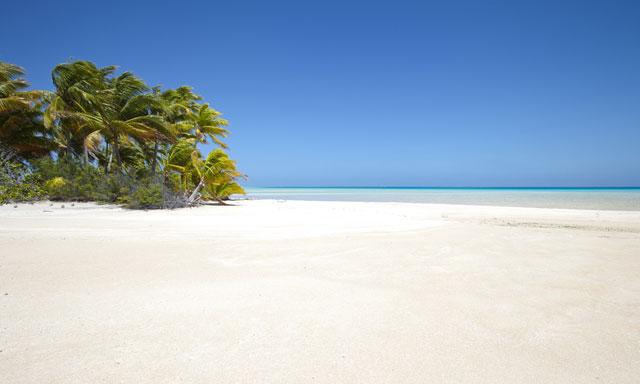 OOLALA Savala Island Day Cruise