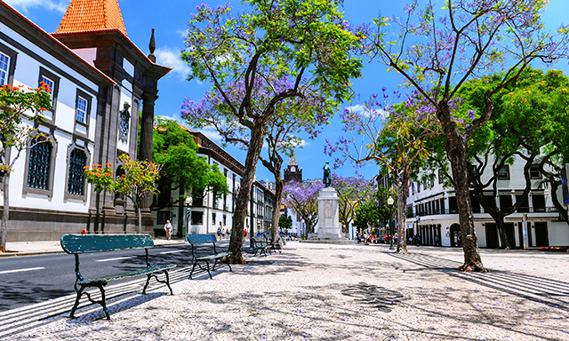 Funchal Bicycle Adventure