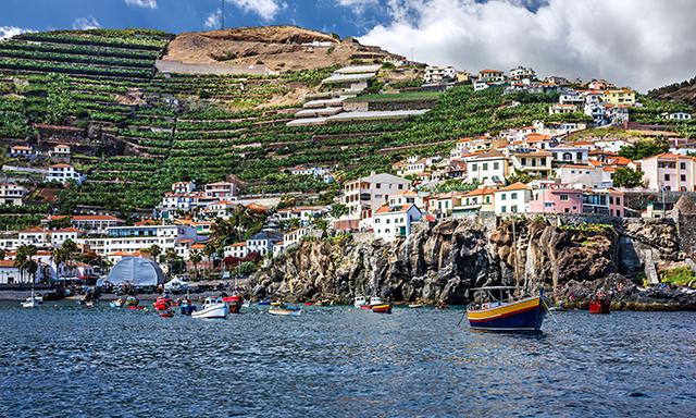 Taste of Madeira
