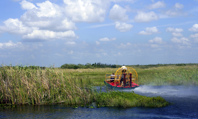 Everglades Eco-Adventure with airport drop-off (MIA)