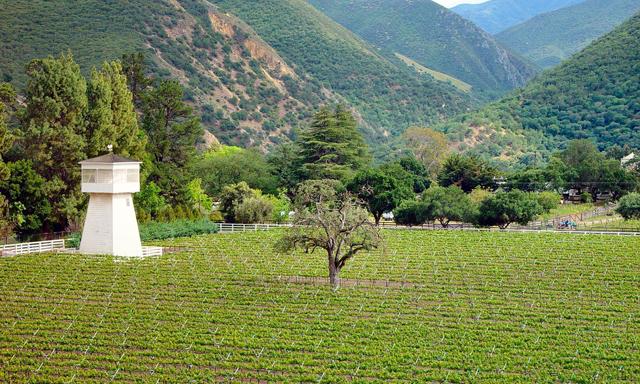 Monterey Wine Tasting & Historic Carmel Mission