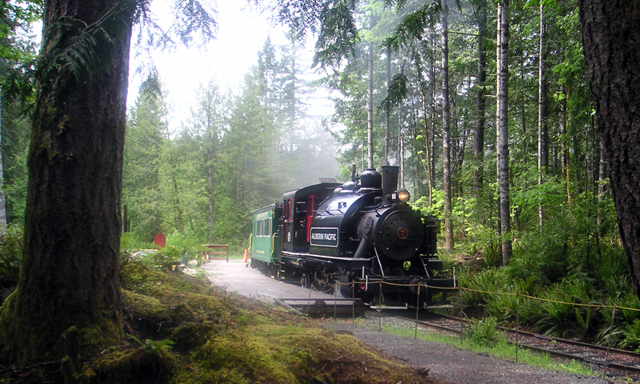 Steam Train & Forest Discovery Centre