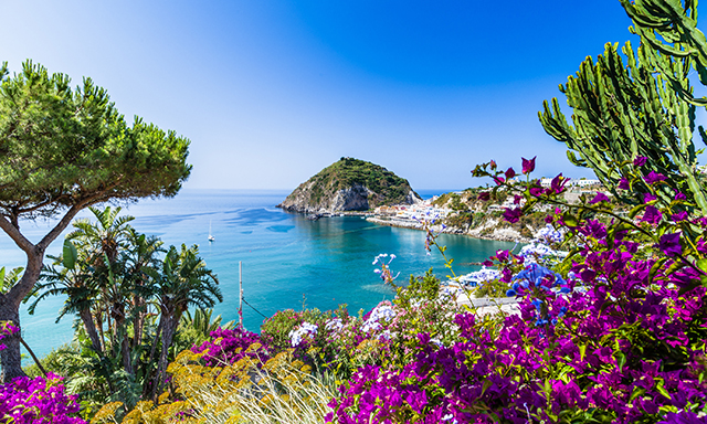 Ischia and Thermal Bath Resort