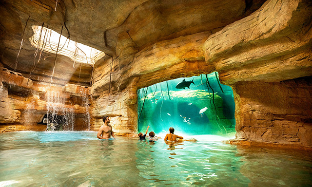 Atlantis Aquaventure Half day