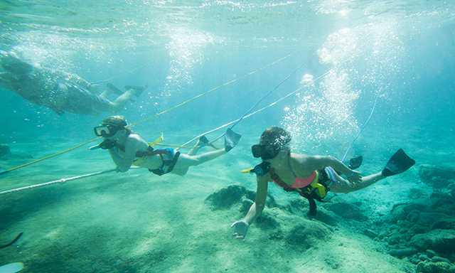 Snuba and Aquaventure