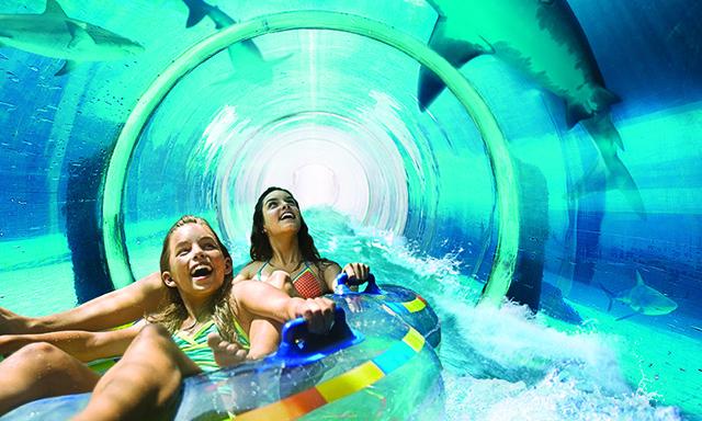 Atlantis Aquaventure with Lunch
