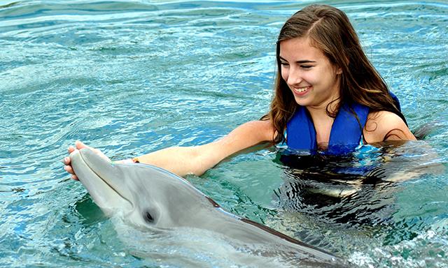 Atlantis Dolphin Shallow Water Interaction
