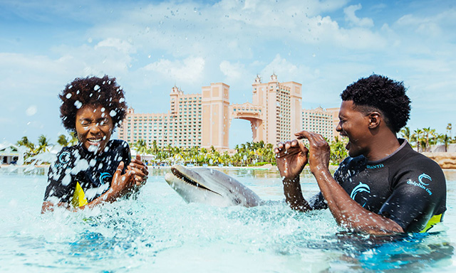 Dip 'N Discover at Dolphin Cay and Beach