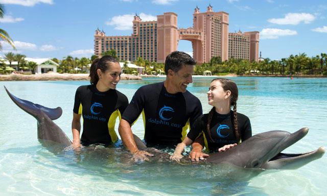 Atlantis Shallow Water Dolphin & Aquaventure