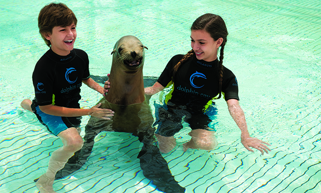 Atlantis Shallow Water Sea Lion Interaction with Lunch and Aquaventure