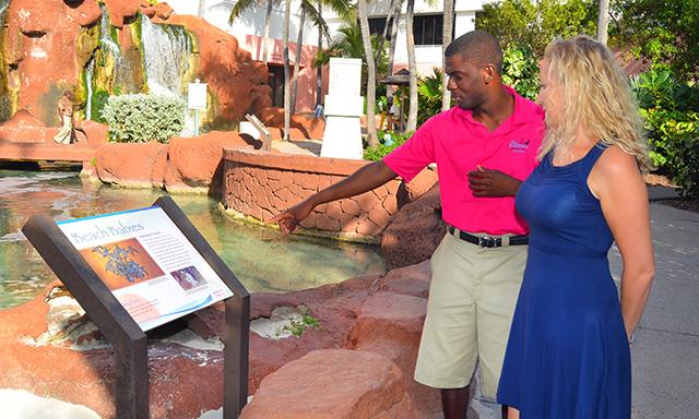 Ecological Discover Atlantis Tour