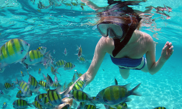 Nassau Seahorse Sailing and Snorkeling