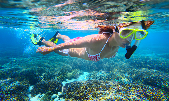 Rainbow Reef Snorkel Featuring National Geographic Snorkeler