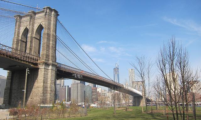 Discover Brooklyn
